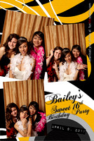 Bailey's Sweet 16th Birthday Party